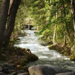 25-mile-creek-small