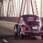 beetle-on-bridge